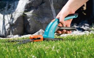 Какой инструмент необходим для ухода за газонной травой? фото