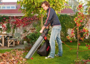 Фото электрического садового пылесоса, homeandgarden.com.ua