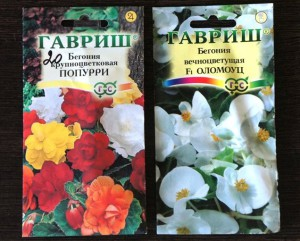 Фото семян бегонии, forum-flower.ru