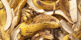 Удобрение из банановых шкурок – польза во всем