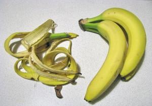 Рецепт подкормки или ценное удобрение из банановых шкурок