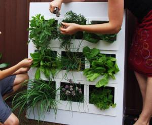На фото - вертикальное озеленение в квартире, master-room.ru