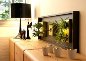 Фото про вертикальное озеленение в квартире своими руками, klipexa.com