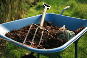На фото - мульча с удобрениями для весенней подкормки сада, 7ya.ru