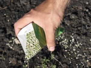 Фото добавления удобрений в почву, jujo.ru