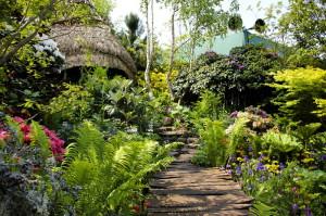 Фото садовых культур для палисадника, new-team.org