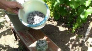 На фото - внекорневая подкормка винограда, atmagro.ru