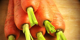 Семена моркови – лучшие сорта для вашего региона