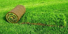 Укладка рулонного газона – газон за один день!