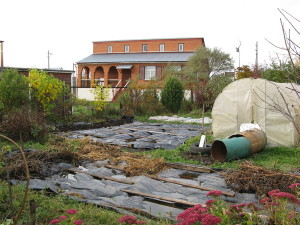 Фото огорода весной, otvet.mail.ru