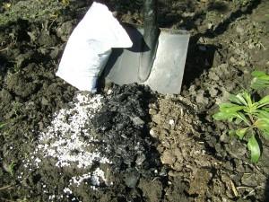 Фото удобрения почвы огорода весной, 7dach.ru