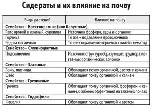 Фото таблицы сидератов, vhoz.ru
