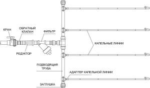 На фото - схема капельного полива, unim.by