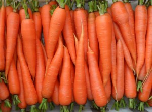 Морковь – лучшие семена и проверенные сорта фото