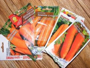 Какие семена моркови лучше сажать весной – ранние сорта