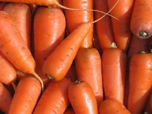 Семена моркови – лучшие поздние сорта