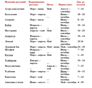 На фото - календарь посадки однолетних цветов, zvetok.ledybiznes.ru