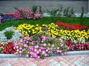 На фото - цветочная клумба, domechti.ru