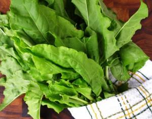 На фото - листья щавеля, diets.ru