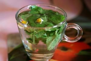 Фото лечебного чая из мелиссы с ромашкой, irecommend.ru