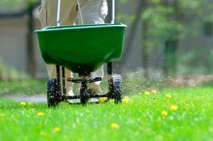 Основы ухода за газонной травой – не забываем удобрять фото