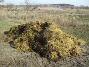 На фото - натуральные удобрения для огорода и сада, zoo-farm.ru