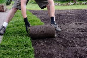 Технология укладки газона – шаг за шагом фото