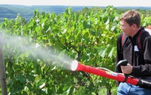 Фото опрыскивания винограда от бактериального рака, megaogorod.com