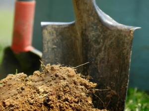 Фото удобрения почвы навозом, ogorodbezzabot.ru