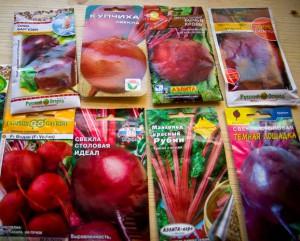 Фото сортов свеклы для хранения в погребе, moyugolok.livejournal.com