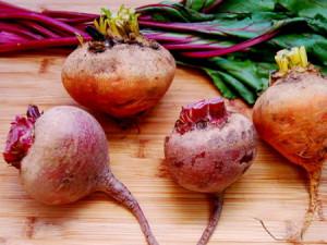 Фото обрезки ботвы свеклы перед хранением, appetitnoe.com