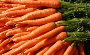 Закладка овощей на хранение в холодильник