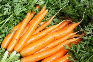 Выбираем место в квартире для хранения моркови