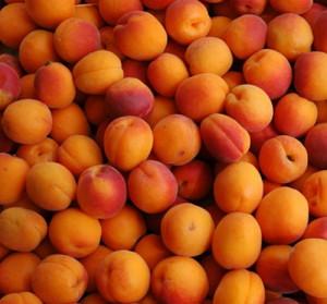 Выбираем и подготавливаем абрикосы к консервации