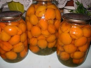Рецепты на зиму – компот из абрикосов фото