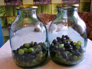 Виноградный компот на зиму – лучшие рецепты приготовления фото