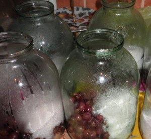 Консервация винограда на зиму – полезные советы фото