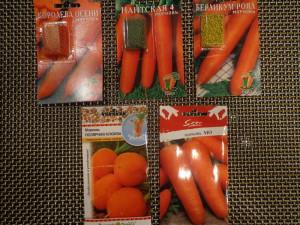 На фото - семена моркови для посадки на зиму, ah-svetik.livejournal.com