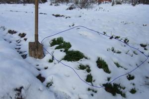 На фото - снег на грядках с морковью, forum.prihoz.ru