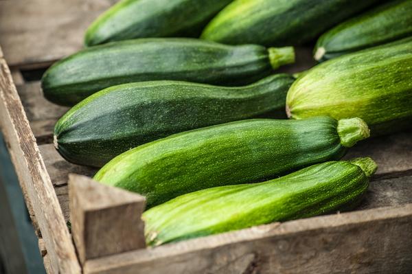 Как хранить кабачки на зиму - свежие овощи круглый год + Видео