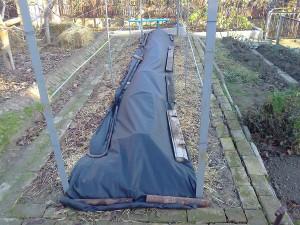 На фото - укрытие винограда на зиму агроволокном, my.mail.ru