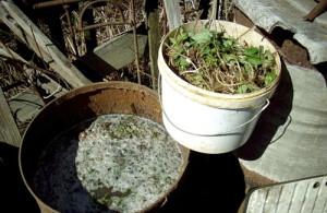 Фото жидкого органического удобрения, dacha.wcb.ru