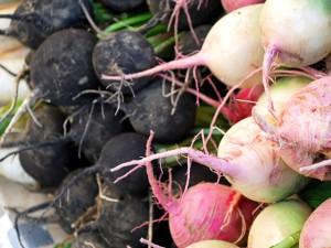 Хранение редьки на зиму – собираем и готовим корнеплоды