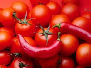 Фото перца и помидор для лечо, wallfon.com