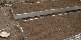Подготовка грядки под озимый чеснок – главная ступень на пути к хорошему урожаю