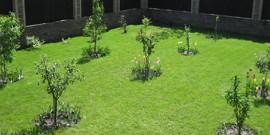 Разбивка плодового сада