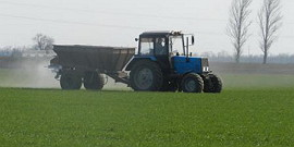 Подкормка озимой пшеницы весной – все делаем по плану