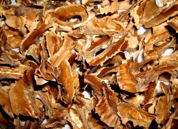 Настойка перегородок грецких орехов на водке при щитовидке
