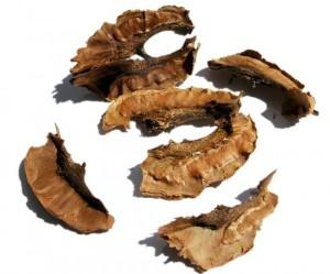 Настойка из перегородок ореха – противопоказания