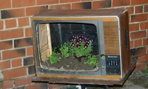 Фото оформления цветника старым телевизором, forum-grad.ru